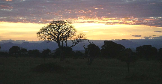 Sunset in Mikumi National Park